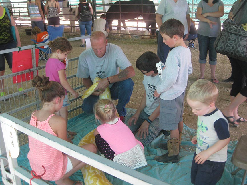 Duchesne County Fair Petting Zoo